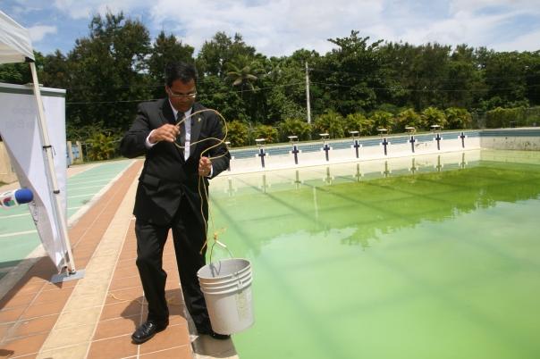 Alcalde se expresa sobre la piscina desde la piscina for Piscina municipal puerto de la cruz