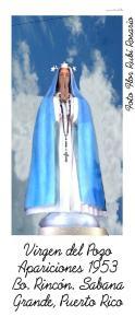 AVSG 22  Mensajes Virgen  Foto Flor